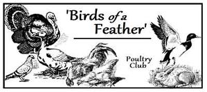 `Birds of a Feather` Logo.jpg