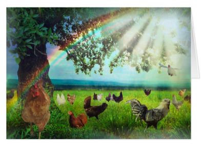 Chicken-Heaven-Sympathy-Card-Pic.png