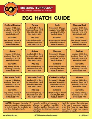 Egg Hatch Guide.jpg