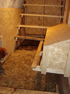 Barn Hen House.JPG